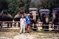 На эит слонах мы и ходили в джунгли