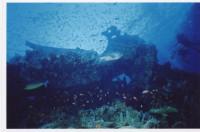 Часть судна, отвалившаяся на мелководье