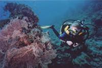 Ленка и коралл