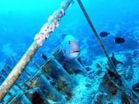Подводная тригонометрия
