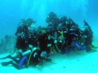 """""""Банда"""" под водой"""