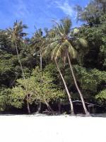 Остров Ulong