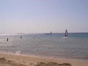 Утро. Серферы выходят в море...