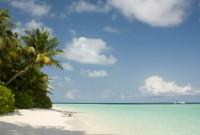 На пляже нашего острова... ИШ