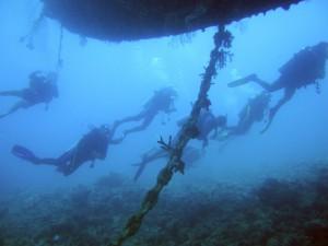 Проплывая под ЭльМиной